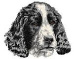English Cocker Spaniel 7